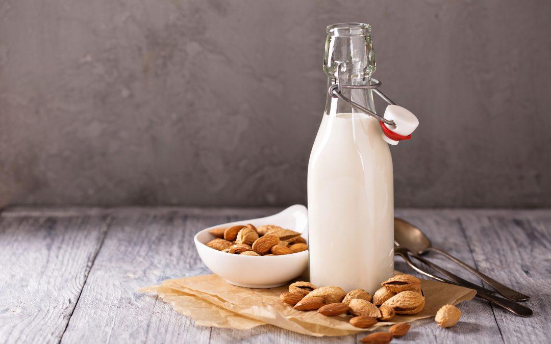 nut milk recipe