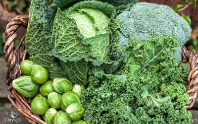 What Makes Broccoli and Kale Superfoods?